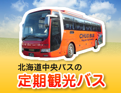 北海総中央バスの定期観光バス